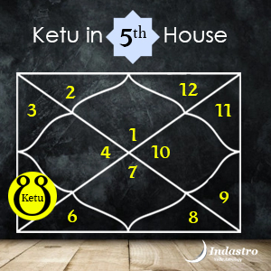 Planets in houses vedic astrology